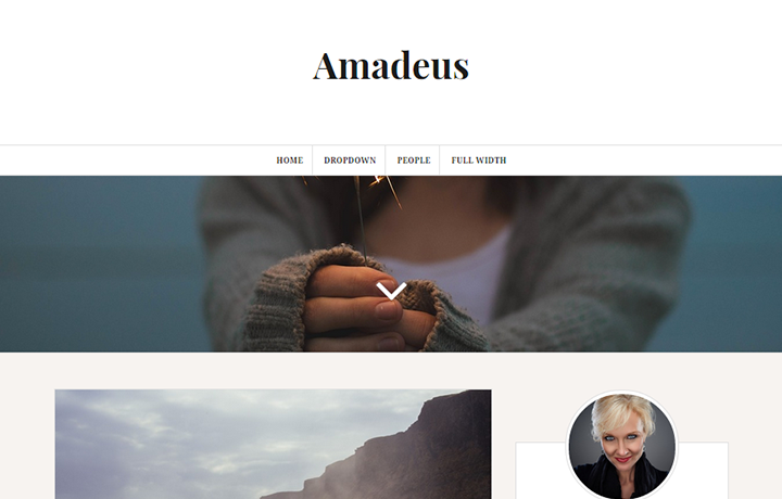 Free WordPress Themes 2016 - Amadeus