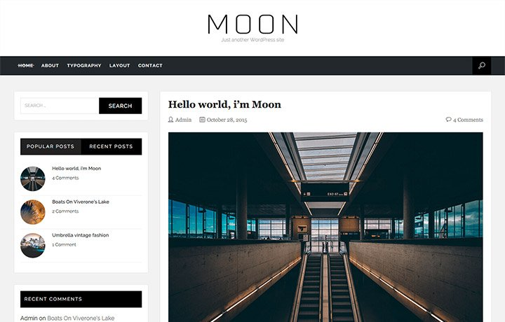 Free WordPress Themes 2016 - Moon