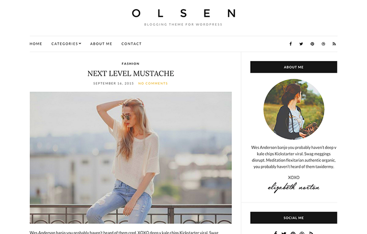 Free WordPress Themes 2016 - Olsen